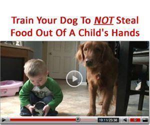 38 Benefits of Owning A Dog : Dog Obedience Training Blog #puppypottytrainingin3days #DogObedienceTipsandAdvice