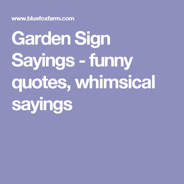 25 Best Funny Garden Signs Ideas On Pinterest Garden
