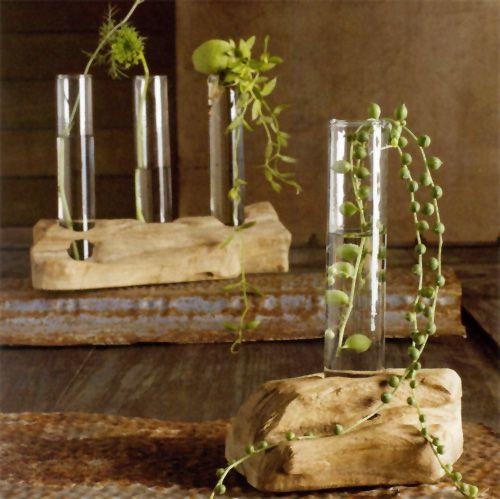 36 best images about test tubes on pinterest flower for Test tube flower vase rack