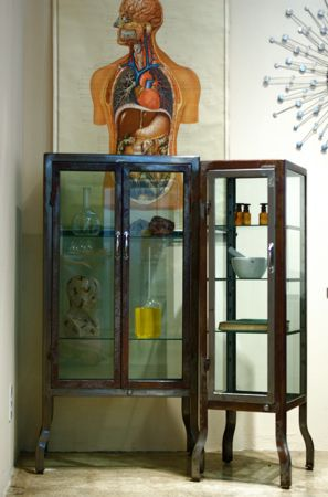 Steel medical cabinets...I would like a wall of them in my guest room. The anatomical chart could go.