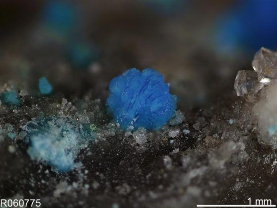 The worlds rarest minerals  Nevadaite (Cu2AlV3)6[Al8(PO4)8F8](OH)222H2O) is a category 1 and 2 rarityformed from the scarce elements vanadium and copper under very restricted environmental conditions. The crystals are colorful but microscopic and only known from two localitiesEureka County Nevada and a copper mine in Kyrgyzstan. Credit: Robert Downs University of Arizona.    Scientists have inventoried and categorized all of Earths rare mineral species described to date each sampled from…