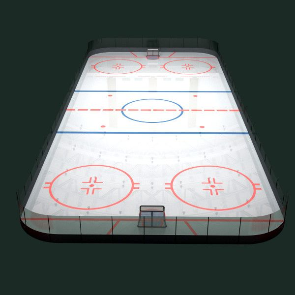 Ideal D Hockey Rink D Model