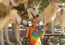 Visit Shadowland Foundation and Play With the Wolves!!!