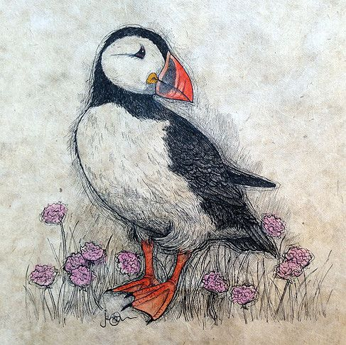 "Puffin and Thrift. Pen, ink and watercolour on handmade paper. 8.5"" x 8.5"". By artist Jennifer Chance @ Jack-in-the-Green Gallery."
