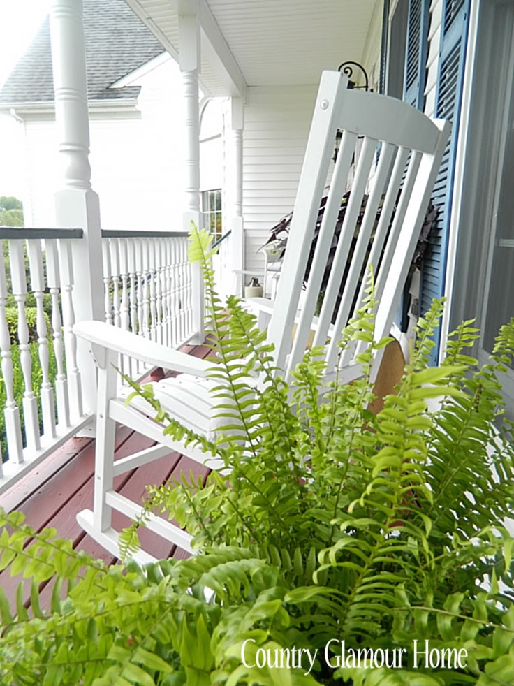 Ferns on the front porch