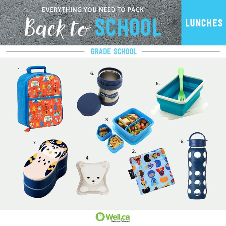 All the Back to School Containers you'll need for your grade schooler's lunch