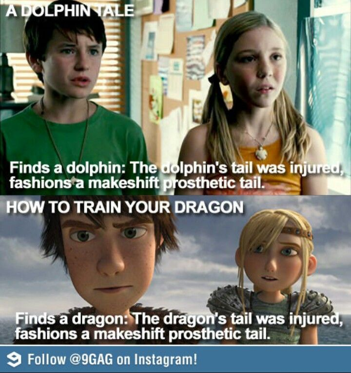 Wa?!<<< Dolphin Tail and Httyd. There's a comparison that I did not see coming.
