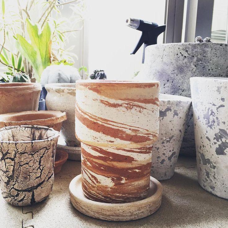 植木鉢を幾つか買い足し 真ん中のマーブルは今回1番のお気に入り  お天気安定したらいよいよ植え替え  #植物のある暮らし #植え替え #鉢 #植木鉢 #そろそろ #botanical #green #plants #plantstagram #ビカクシダ #多肉植物 #succulent #succulove #cuctus #cacti #cucctus #マーブル by yuukoy