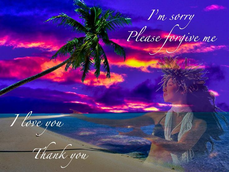 how to say im sorry in hawaiian