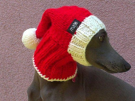 Santa Dog Hut / Weihnachten Hund hustet / x-mas Hund von majStyle