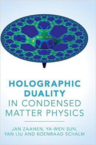Resultado de imagen para holographic duality zaanen