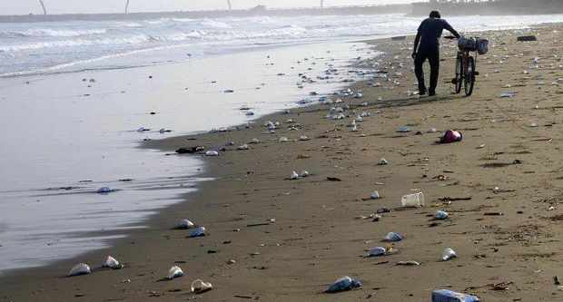 Se llenan de Medusas las playas (Agua Malas) - http://www.esnoticiaveracruz.com/se-llenan-de-medusas-las-playas-agua-malas/