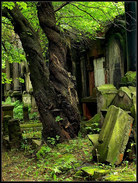 Beautiful....Museum of Cemetery Art, Wroclaw Poland. Really a German Jewish Cemetary from before WWII. Amazing in person.