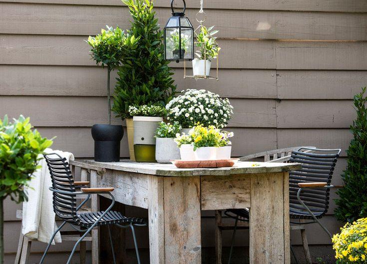 34 besten Terrasse \ Balkon Bilder auf Pinterest Balkon, Garten - terrassen sichtschutz deko varianten