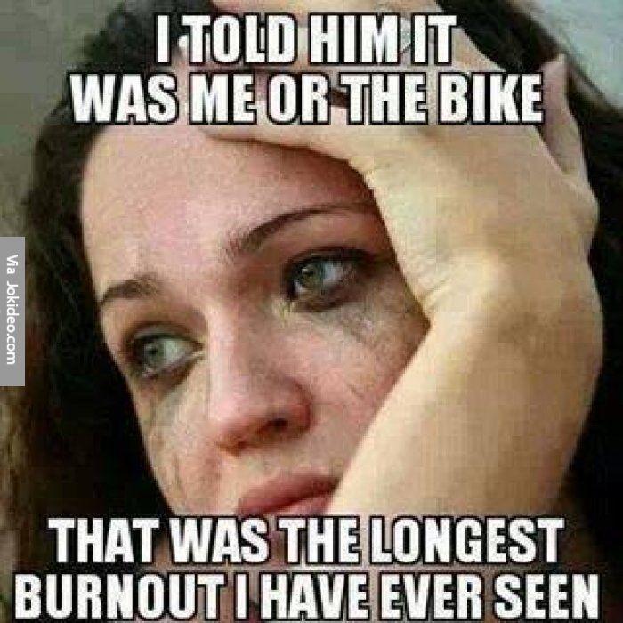 Busty bitch vids