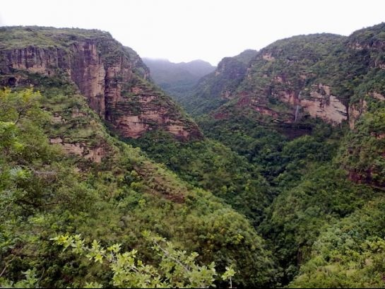 #India, #Pachmarhi - The tranquil and serene valleys of Panchmari,a hill station located in the heart of India.  http://www.nativeplanet.com/pachmarhi/photos/5374/