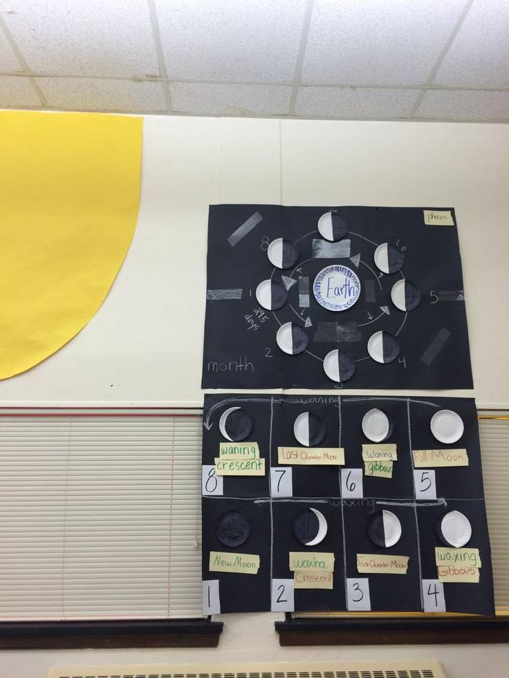 Science TEKS 8.7B Demonstrate and predict the sequence of events in the lunar cycle.