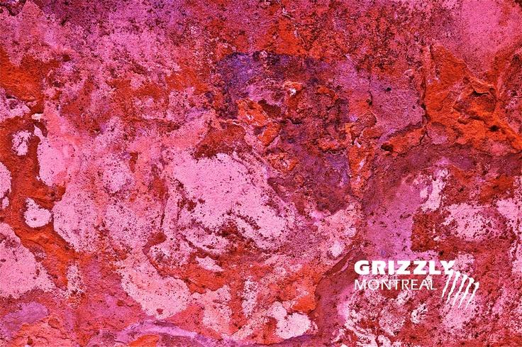 Grizzly Montréal / BLOGUE   Tirages Fine Art en édition limitée