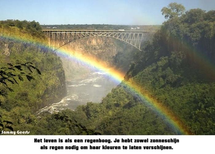 Het leven is als een regenboog. Je hebt zowel zonneschijn als regen nodig om haar kleuren te laten verschijnen.