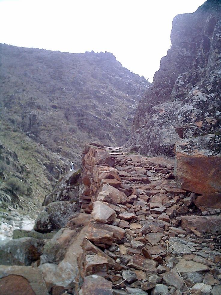 Vereda de montaña junto al Charco del Trabuquete.