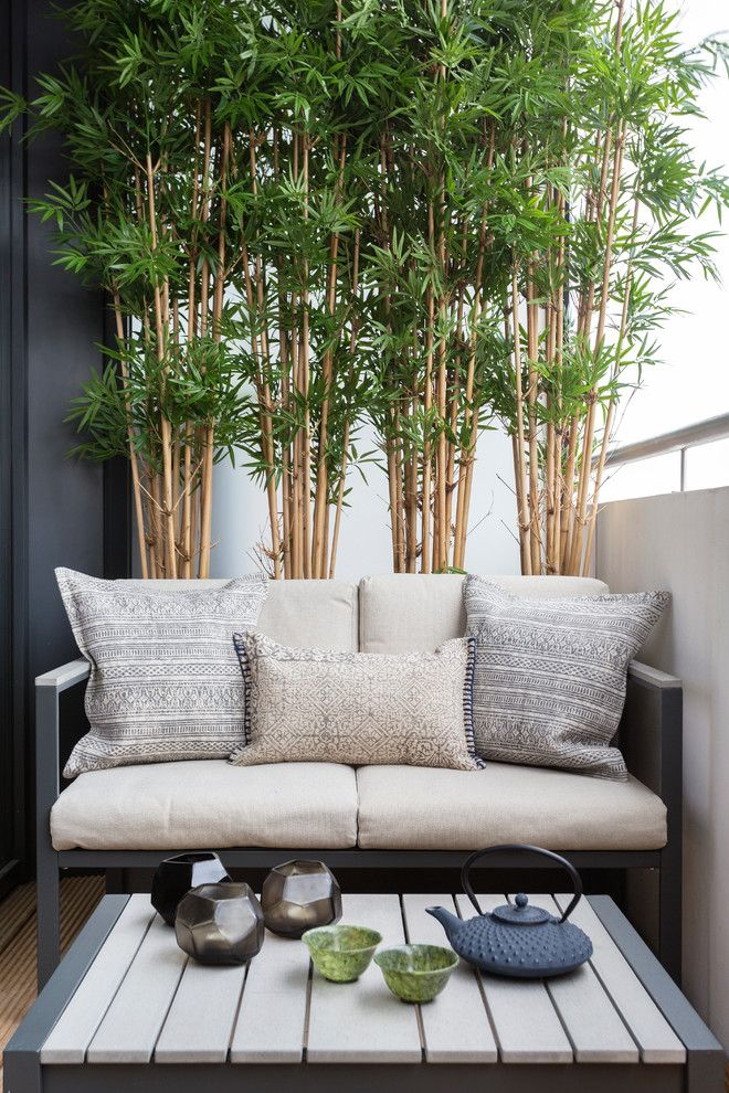 small balcony enclosed with medium high wall with low bench for two with white cushion and small coffee table, and some small bamboo plants on pots of Adding More Privacy to the Balcony