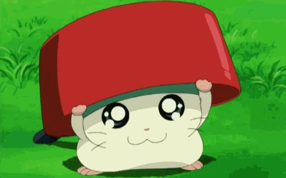 Cappy My First Hamster Hamtaro Anime Kawaii