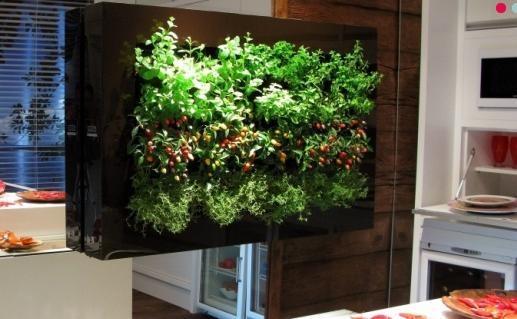 jardim vertical hortalicas:Que tal a ideia de uma jardim vertical de hortaliças dentro da