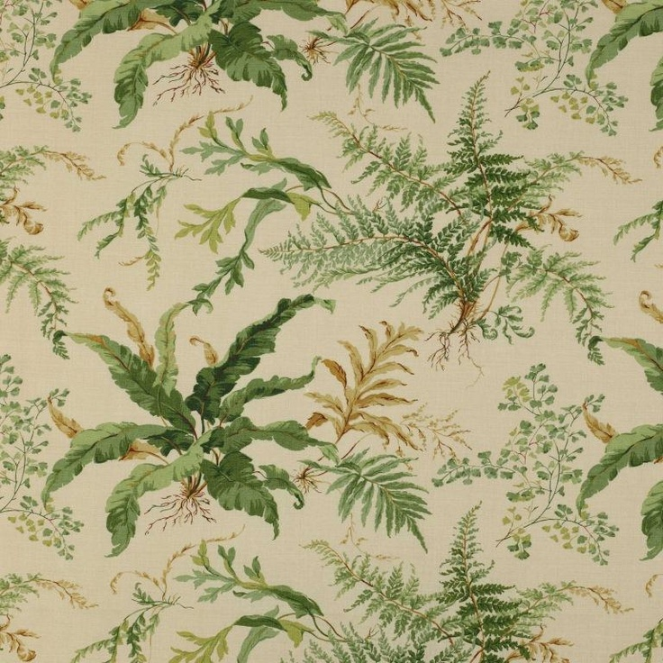 ferns! (colefax and fowler kendal)