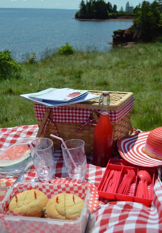 Canada Day is the perfect day for a red and white picnic.  Get some tips and menu ideas here: http://gustotv.com/food/2014/06/27/gustos-guesto-blog-canada-day-picnic/ via @peibistro