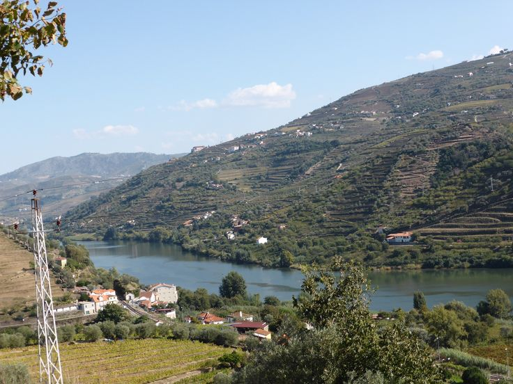 Douro River with vineyards