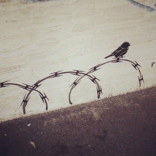 Pì NEVER SMOKE PLASTIC.... rbk #kaos#kaosone#insomnia#ghoast#stencil#stencils#stencilstuff#stencilart#streetart#streetartistry#streetarteverywhere#urban#street#urbanart#urbanwall#wall#vandalism#vandal#birds#sprayart#spraypaint#alien#norule#laspezia#streetart#free#