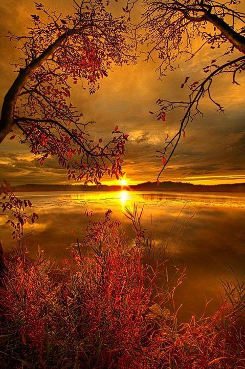 Sunset on Mauthe Lake Wisconsin | nature | | reflections | #nature https://biopop.com/
