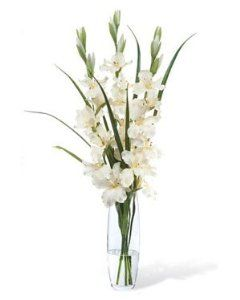 White Gladiolus Flowers For Entrance Seating Chart Tables And Other Extra Tables At Wedding