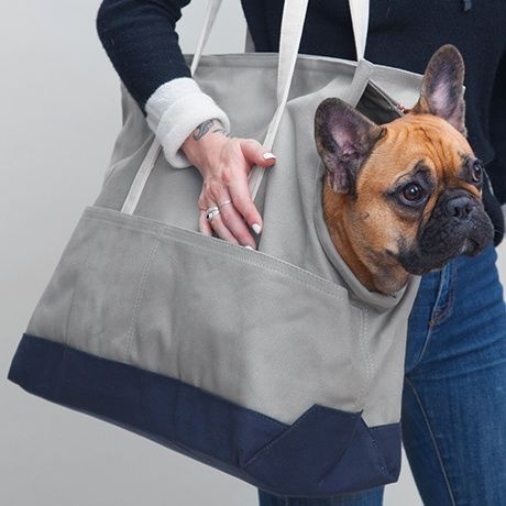 Große Hundetasche - Grau/Blau - LoveThyBeast
