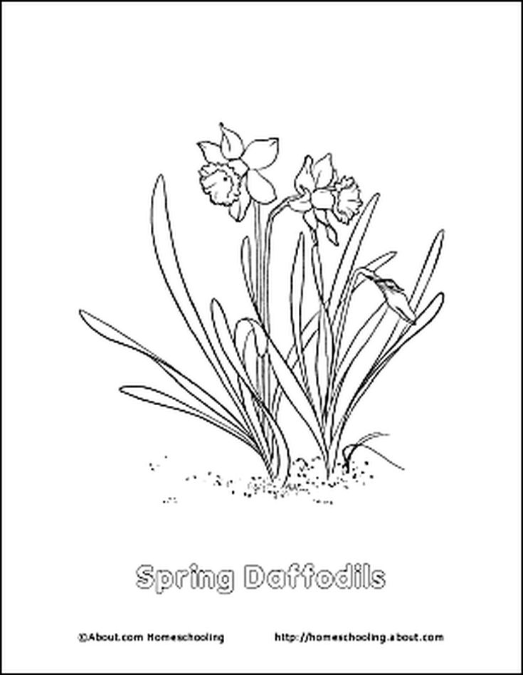 Free Printable Spring-Related Activity Worksheets | Flower ...