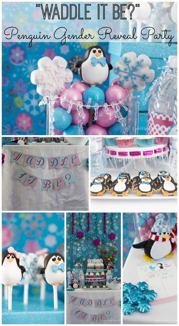 """""""Waddle it Be?"""" gender reveal baby shower, great idea for winter! See more party ideas at CatchMyParty.com. #babyshower #genderreveal #penguin"""