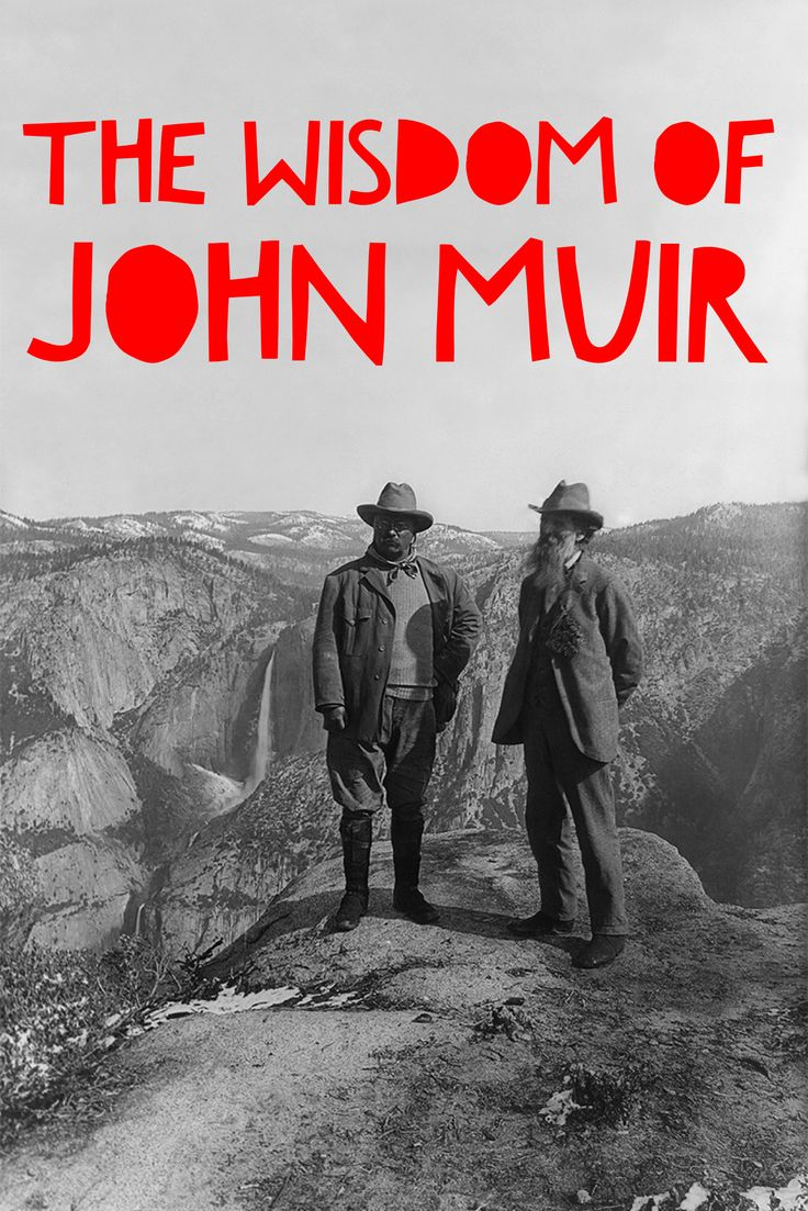 Our favorite inspirational quote from John Muir