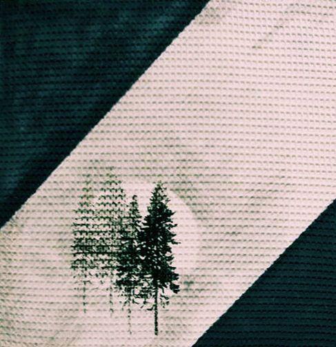Peza, Acrilico su tela, 40X40, 2011