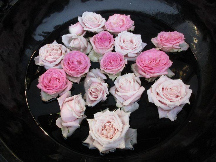 Rosa roser i vann.
