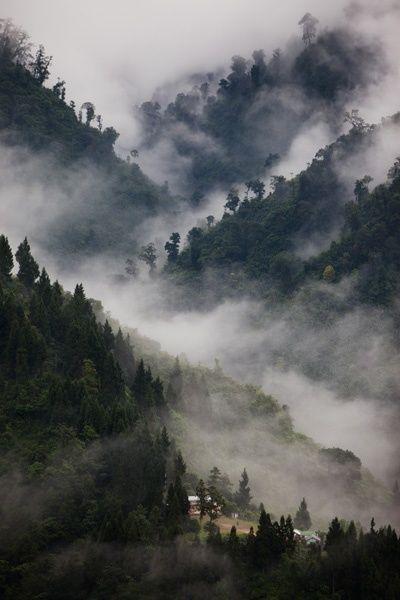 "The North East Seven Sister states, also called ""Paradise Unexplored"" are the contiguousstatesofArunachal Pradesh, Assam, Manipur, Meghalaya, Mizoram, Nagaland and Tripura innortheastern India.…"