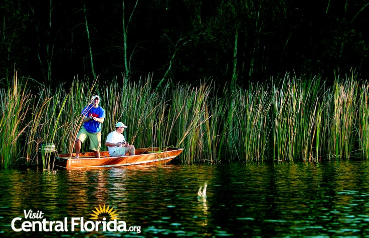 17 best images about splash into central florida on for Florida fishing lodges