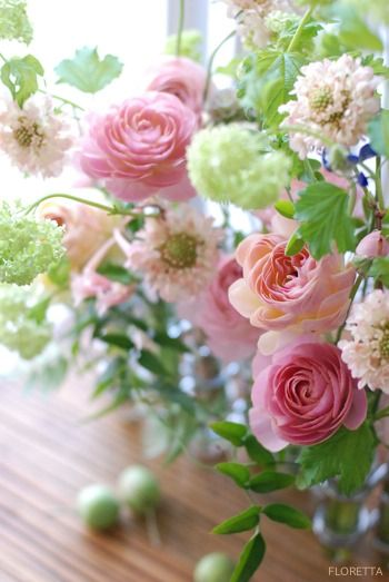 Ranunculus. Pink, green and white is such a beautiful combination!  Aline ♥