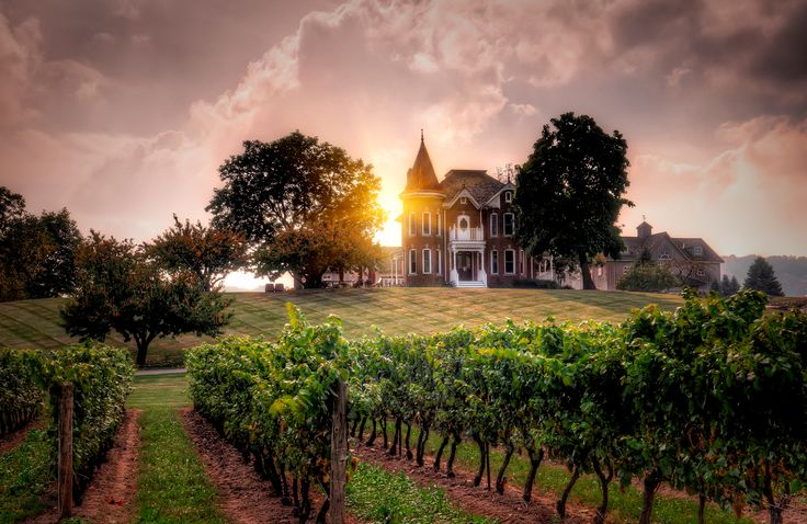 Peninsula Ridge Winery in Beamsville, ON. Before this was a winery it was just an old house down the road from my childhood home. I had 2 friends live here, one when I was 7 and another when I was 14, so I stayed here many nights at different times in my life. It's stunning.