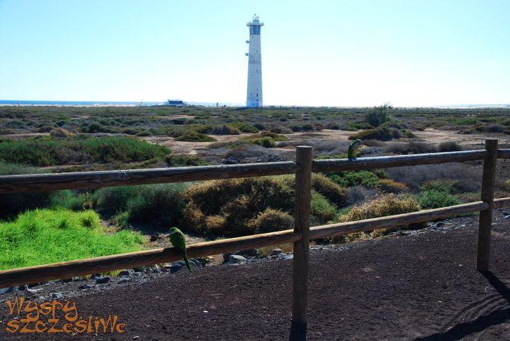 Rezerwat Solana El Matorral i latarna morska
