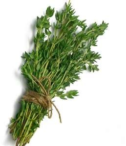 Thyme: Food Recipes, Perfect Gardens, Clean, Herbs, Health Benefits, Hair Serum, Facials Masks, Polish, Oil
