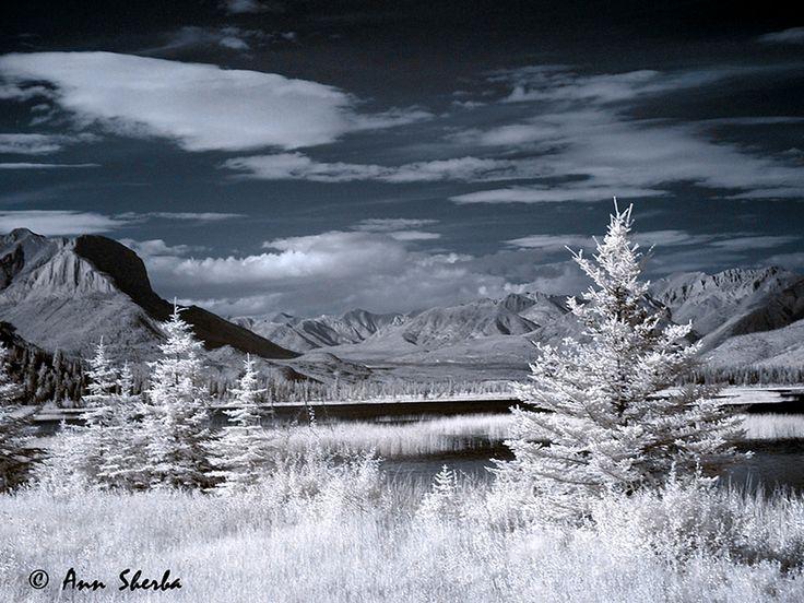 Infrared Jasper