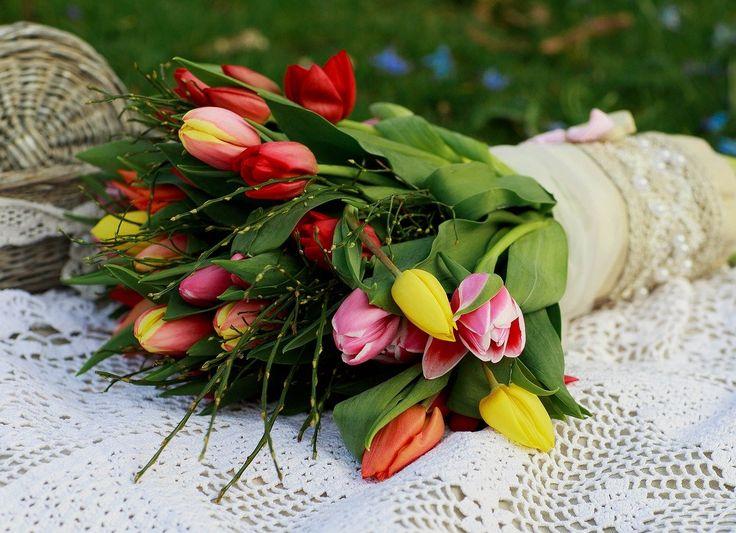 Így lesz a tulipánhagymából pár perc alatt illatozó szépség. http://balkonada.cafeblog.hu/2017/04/01/vegre-hazankban-is-kaphato-az-instant-tulipan/