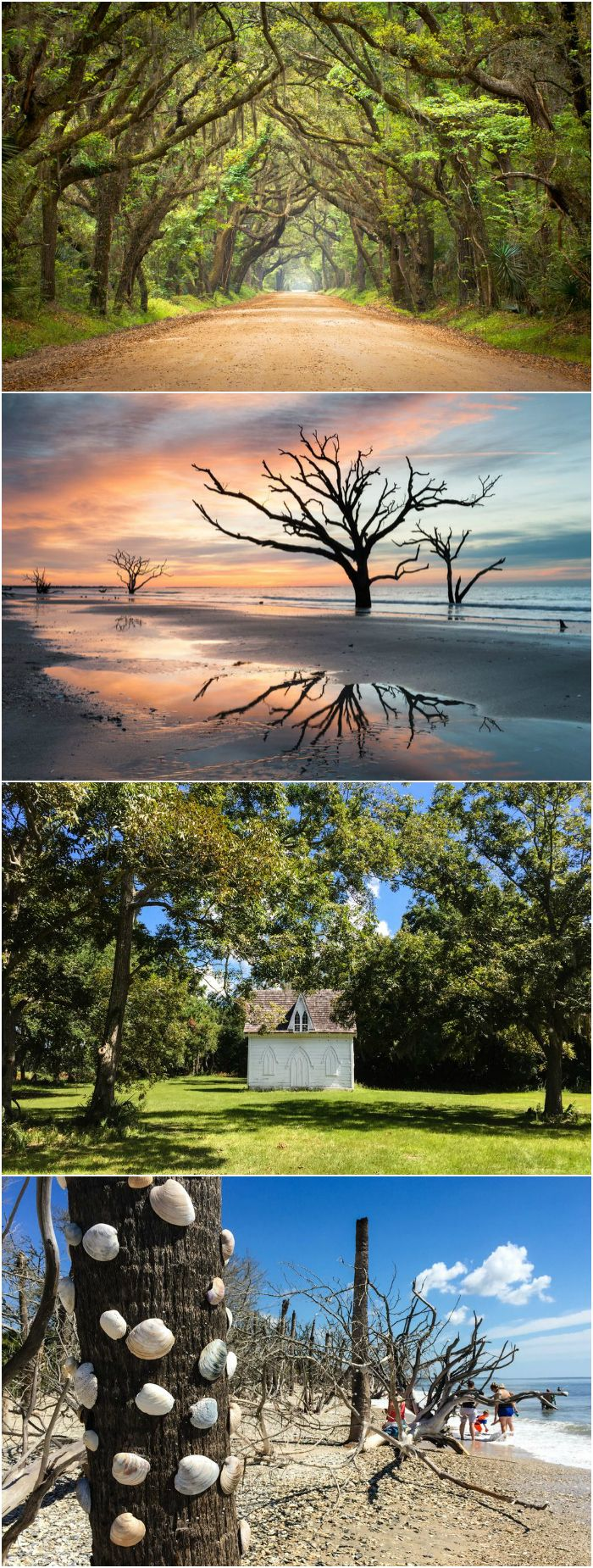 South Carolina is famous for its stunning landscapes and rich natural history, and if there's one place that has it all, it's Botany Bay Plantation.
