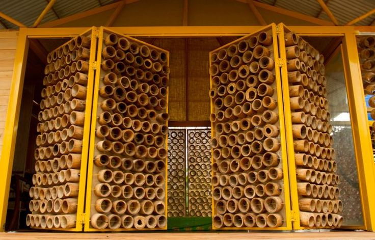 Casa construída com bambu tem aberturas no teto para visualização da lua; veja - Casa e Decoração - UOL Mulher