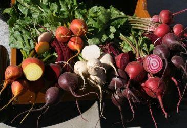 Sett farge og smak med norske rotgrønnsaker